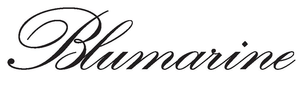 Risultati immagini per blumarine logo