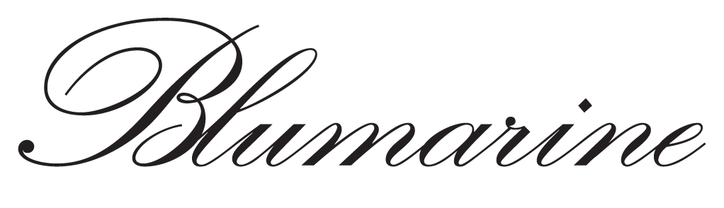 Blumarine Logo / Fashion and Clothing / Logonoid.com