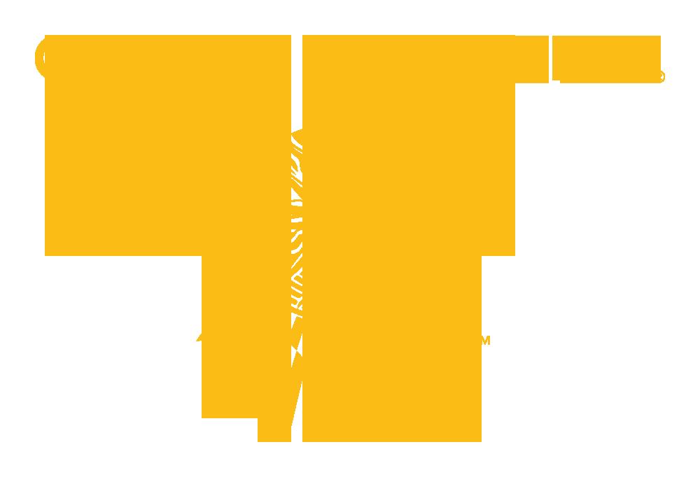 cirque du soleil marketing mix Vp sales and marketing, resident shows division, cirque du  ways to describe our unique mix of music  spurred cirque du soleil to delve deeper into.