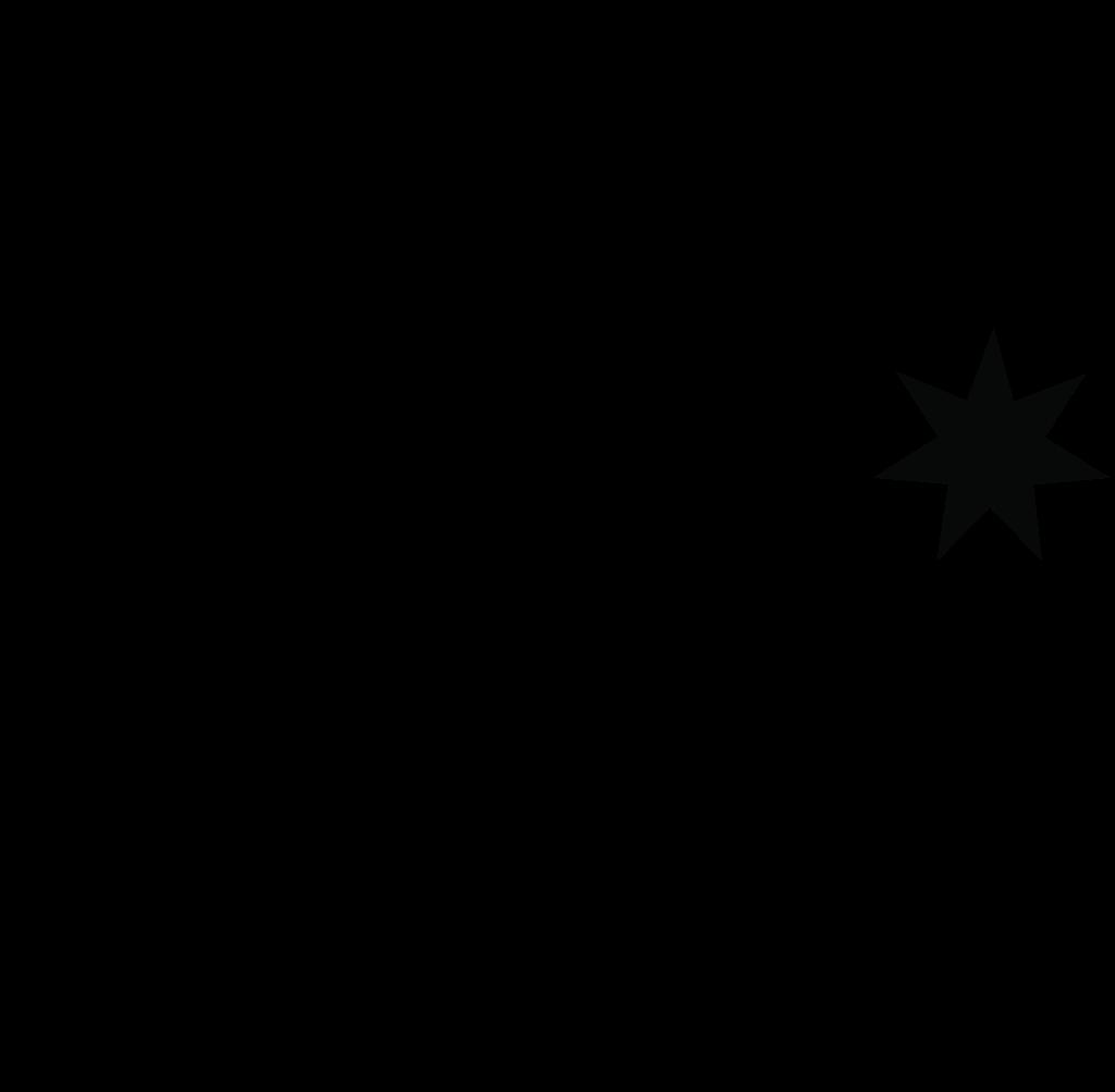 dc-shoes-logo.png