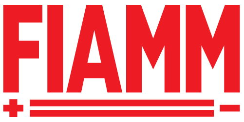 Image result for fiamm logo