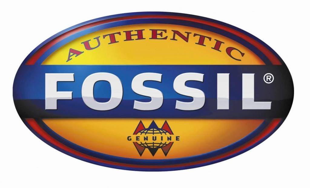 Fossil Logo Watch Logonoid Com