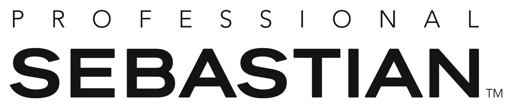 Sebastian Logo Vector Sebastian Professional Logo